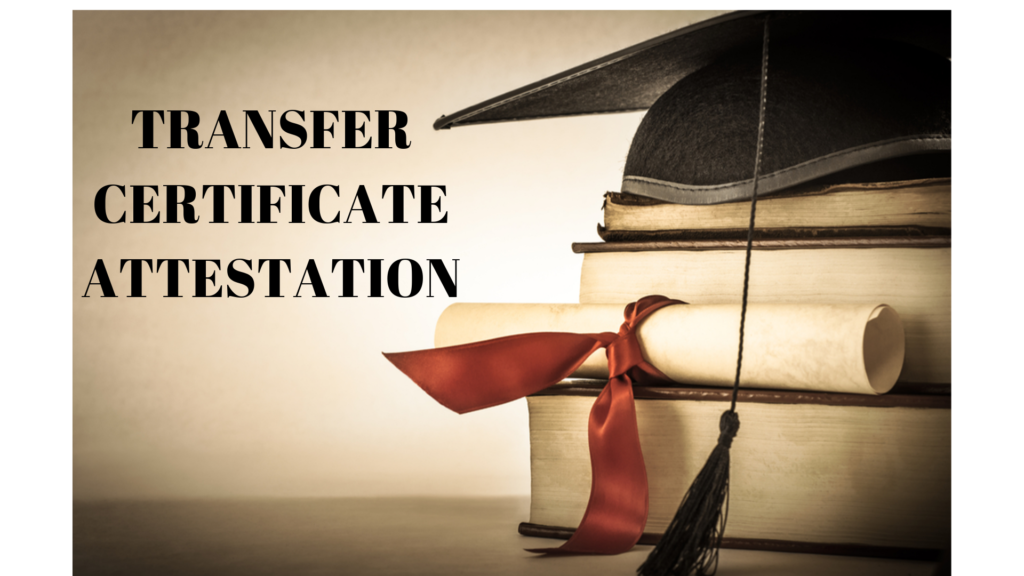 Things To Know About Transfer Certificate Attestation In Qatar